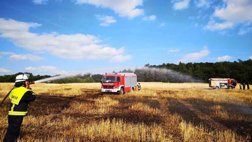 Großer Flächenbrand Butzweiler